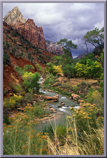 Virgin River and Court of the Patriarchs - Zion, UT